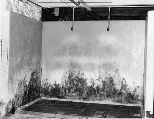 Abandoned Psychiatric Hospitals