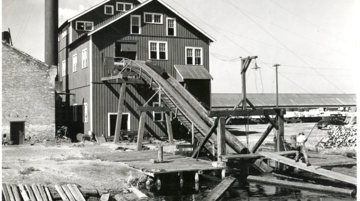 The Unsolved Sawmill Murder - Margaret Martin • Morbidology