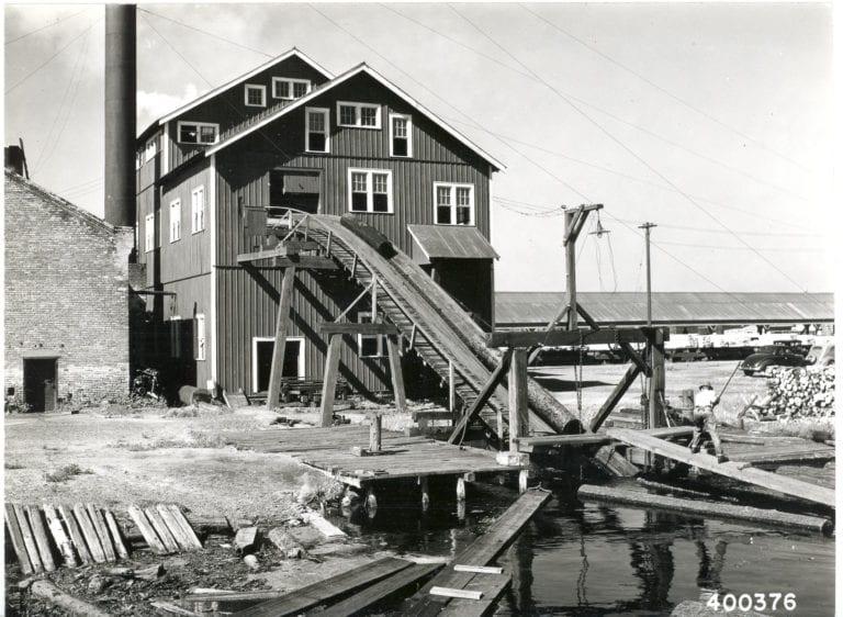 The Unsolved Sawmill Murder - Margaret Martin