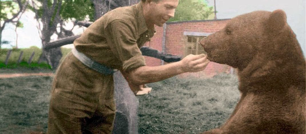 Wojtek – The Polish Soldier Bear