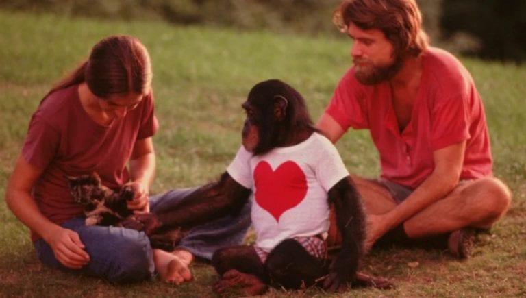 A Chimp Named Washoe