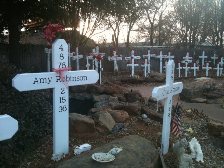 The Murder of Amy Robinson