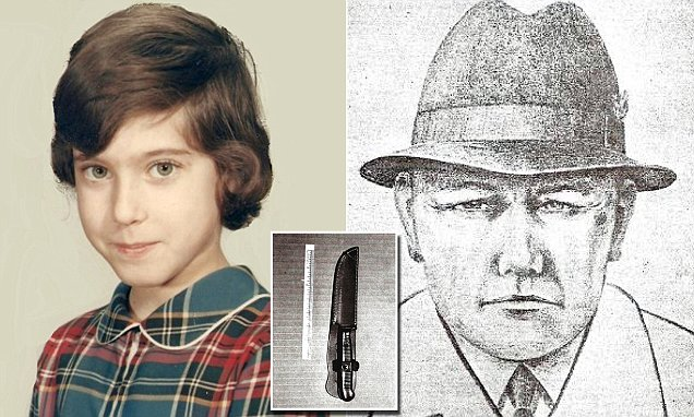 In Broad Daylight - The Unsolved Murder of Wendy Wolin